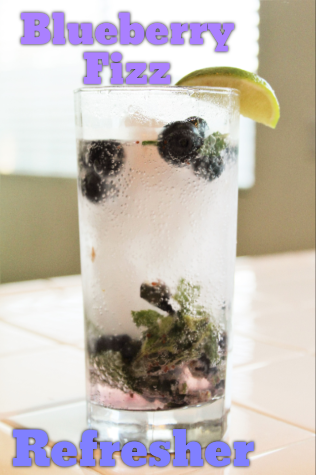 Low Calorie Beverage - Blueberry Fizz Refresher